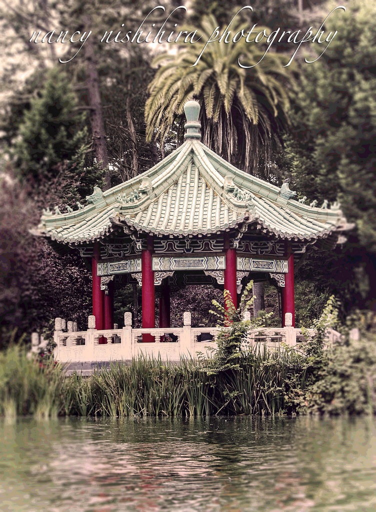 Golden Gate Park –Pagoda